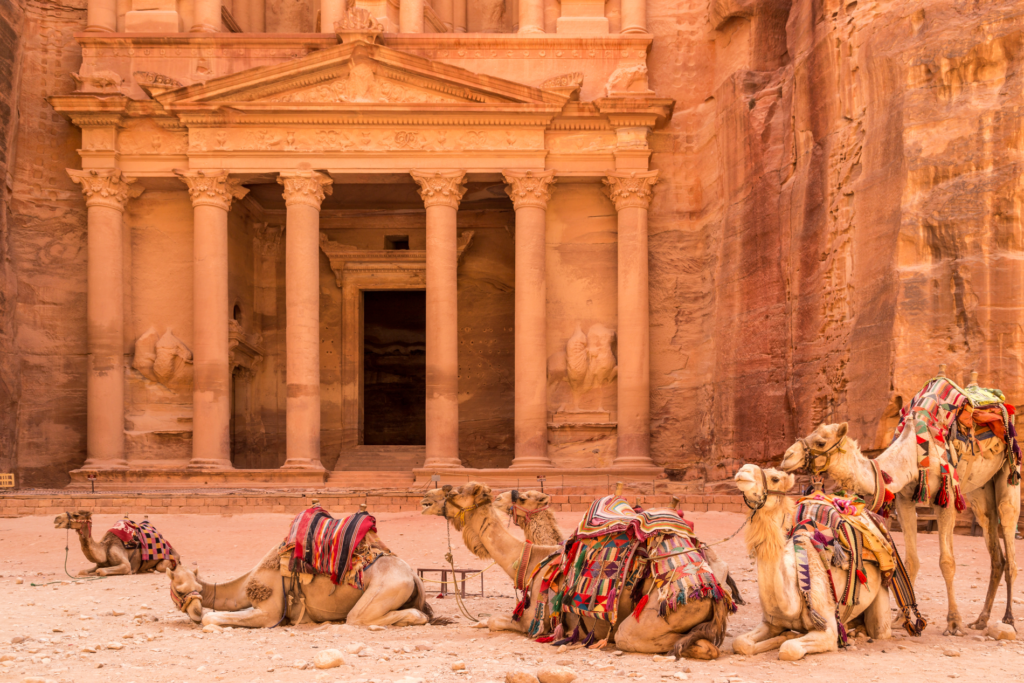 Canva – PETRA, JORDAN – JUNE 30, 2014_ Camels resting near the ancient temple in Petra, Jordan